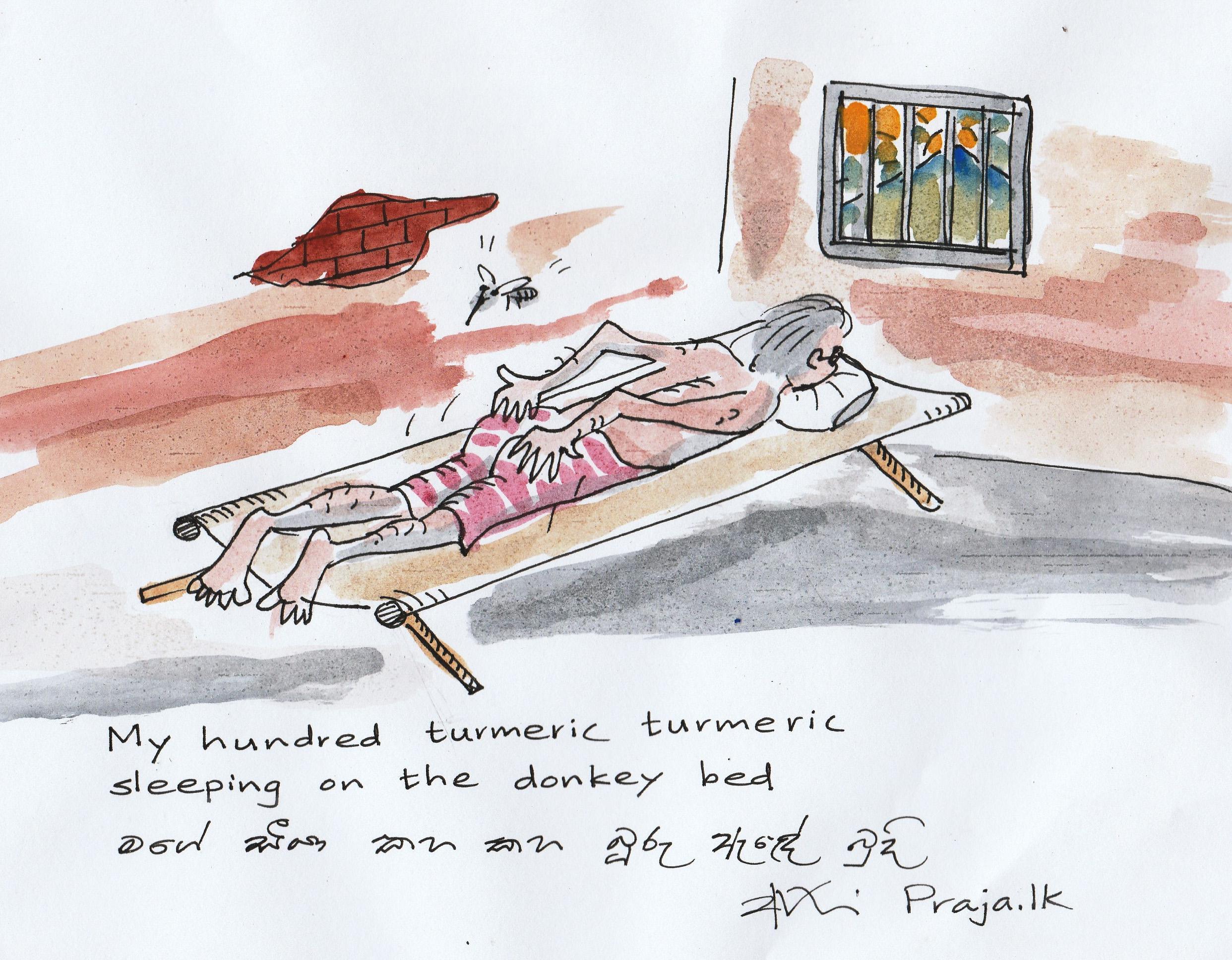 turmeric: cartoon by Ajith Perakum Jayasinghe
