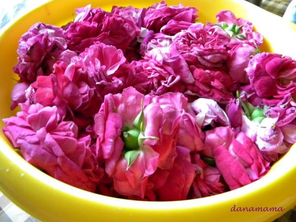 dulceata de trandafiri8