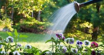 νερό - κήπος