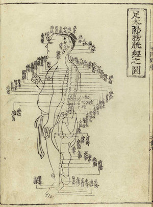 Old drawing of meridians in Chinese medicine