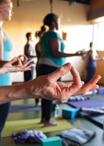 Photo: hands held in yoga mudra