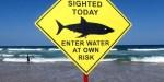 Quais São As Contraindicações Do Surf?