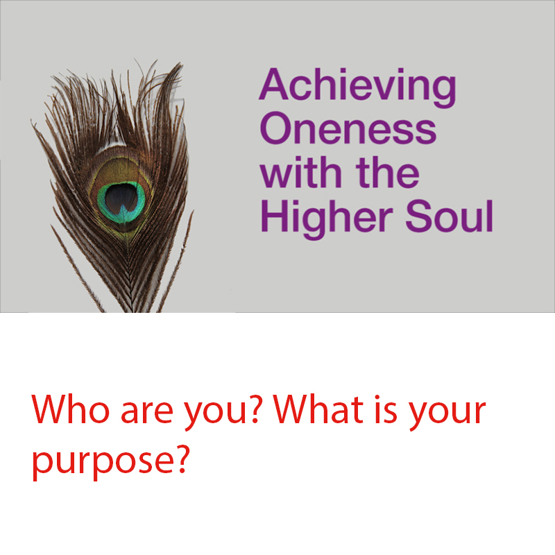 Achieving Oneness with the Higher Soul Course