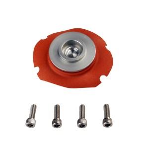 AFS-Fuel Pressure Regulator Service Kit