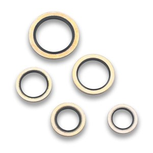 Earl's Perf Washers Seals O-Rings