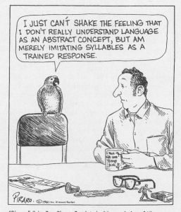 Bizarro Animal Talk