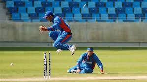 All Domestic Cricket T20 Leagues Prediction