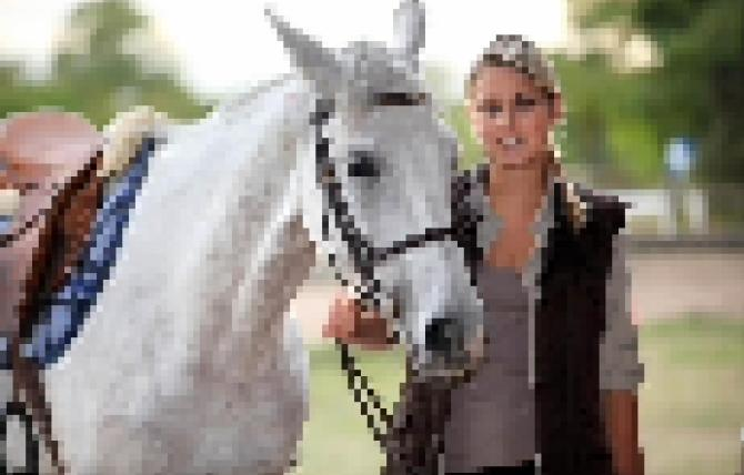 horse-01