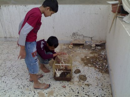 "2009- Our Tortoise friends- JRABA- In happier times - this year my sons asked their mother- Is it so dangerous in Libya that people have to start praying for the people there? Their school would jointly pray for us. It was unnerving for them, as it was not ""Robert's Uncle"" for whom they were praying but their own father."