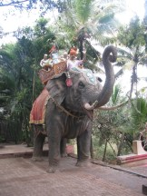 Elephants in front of Kadsidheshwar Temple