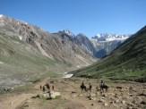Towards Panchatarn