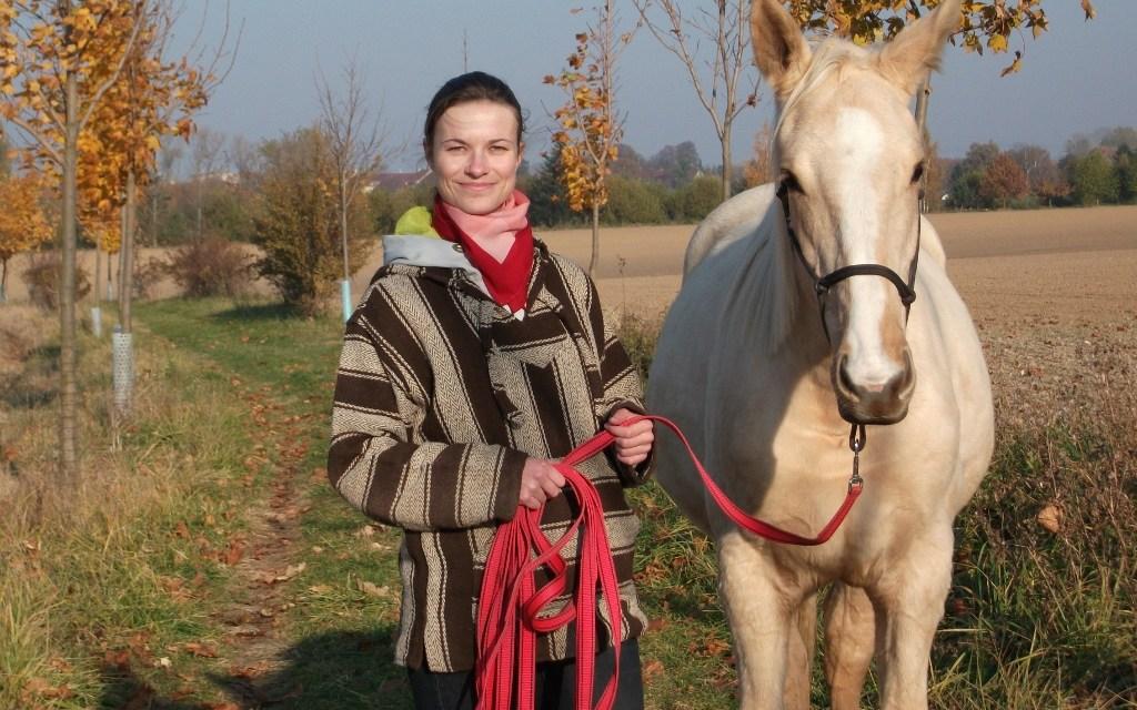 Proč na tom koni nejedete?