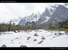 Ice Everywhere @ Sikkim