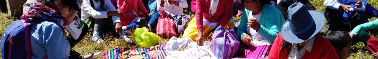 Trukay muruy: Intercambio ritual de semillas