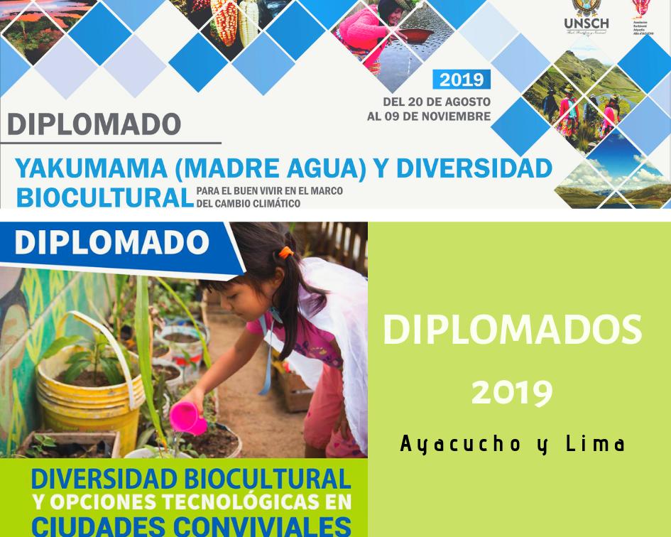 diplomados-slide