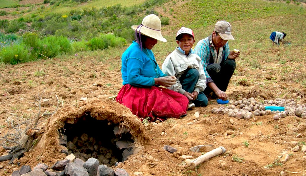 Convivencias de wawas y adolescentes en tiempos del COVID-19 en el Norte Potosí y Cochabamba (Bolivia)
