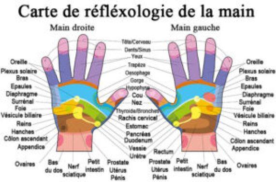 carte réflexologie palmaire