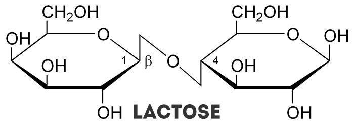 FoodLab: Lactose