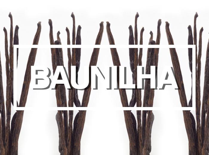 Ingredientes: Fava de Baunilha por PratoFundo.com