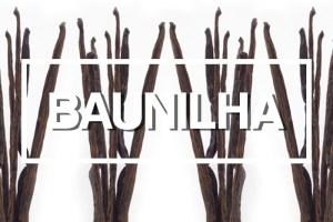 Ingredientes: Fava de Baunilha