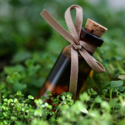 Using Peppermint Essential oil {Staying Healthy}