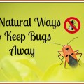 Natural Ways to Keep Bugs Away