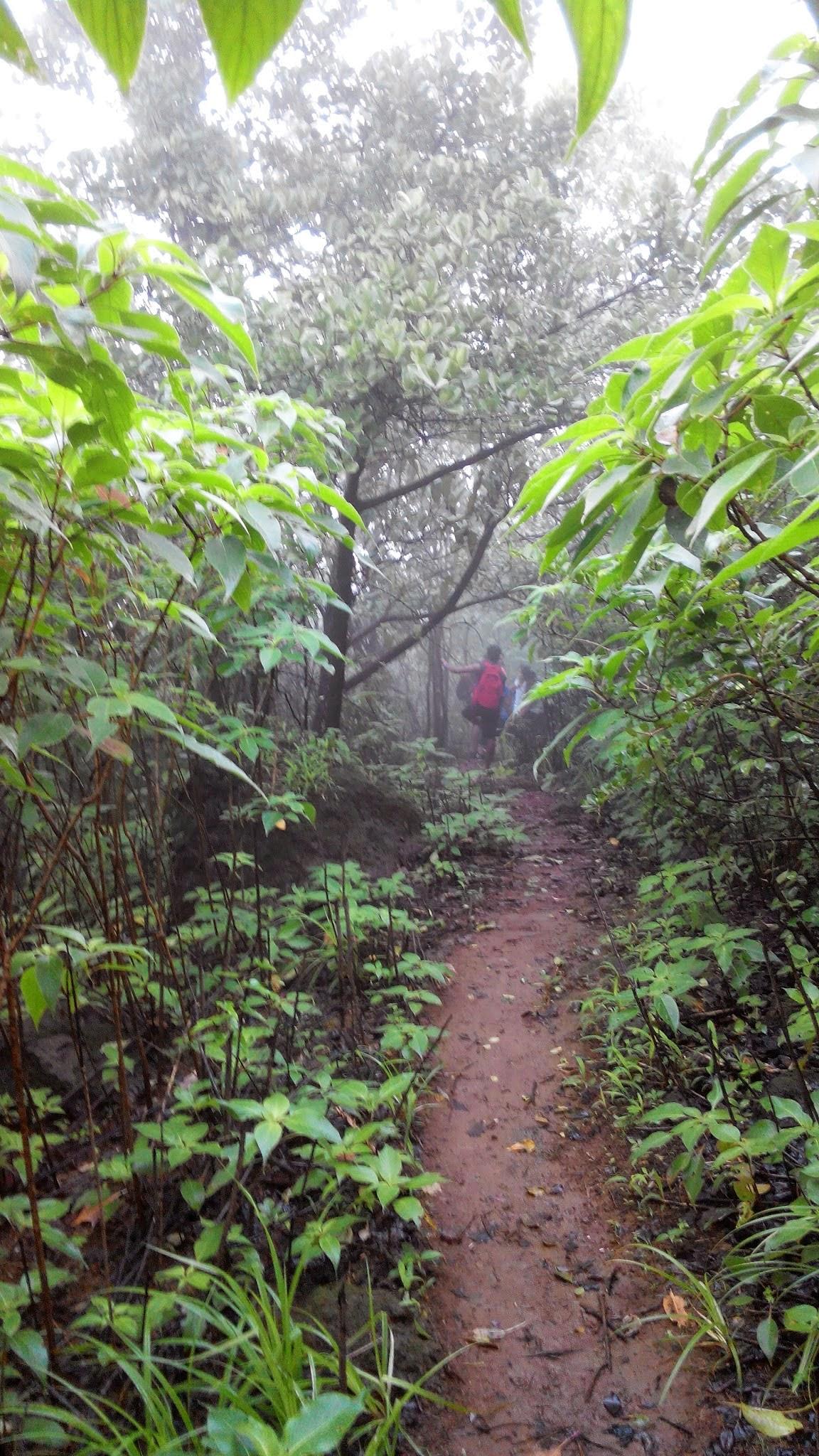 Road to Prabalgad