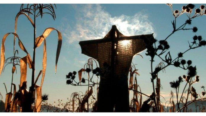Naturaleza, ciclos, cielo, maíz