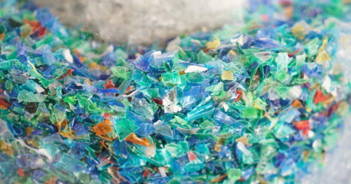plastico, microplstico, consumimos plastico, cuanto plastico comemos a la semana, comemos una tarjeta de credito a la semana, el plastico en nuestro cuerpo.