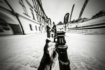 przydatne-komendy-fotografowanie-psow-blog-psach-09