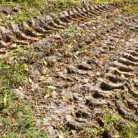 nieruchomość rolna