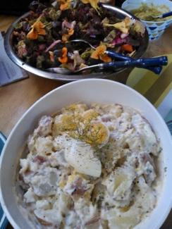 (Back) Organic garden salad, (Front) Potato and egg salad