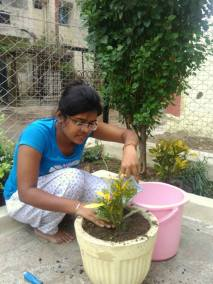 Tree plantation by Prayas member in progress, June 2017