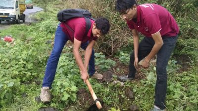 Tree plantation in progress near Bopdev ghat, Pune Date 16-Jul-17