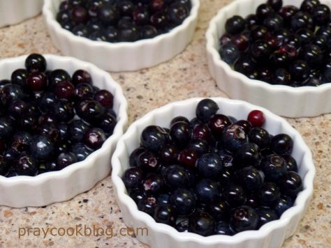 fresh blueberries in tart dish