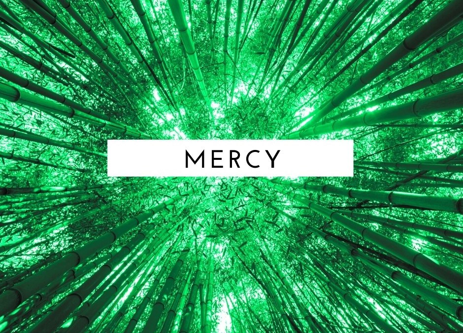 [Titus] Living in the Mercy