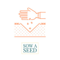 hand sowing seed