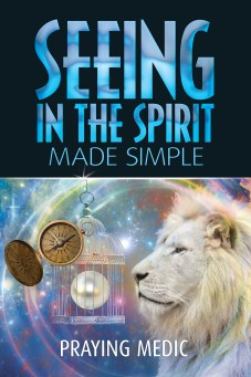 kindle_seeing-in-the-spirit_front_rgb_72dpi_revDec2015