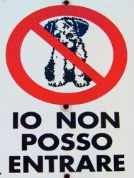NO PUPPIES ALLOWED