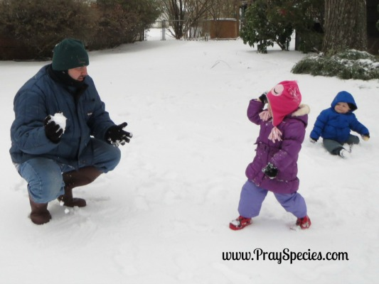 snowy day snow ball fight