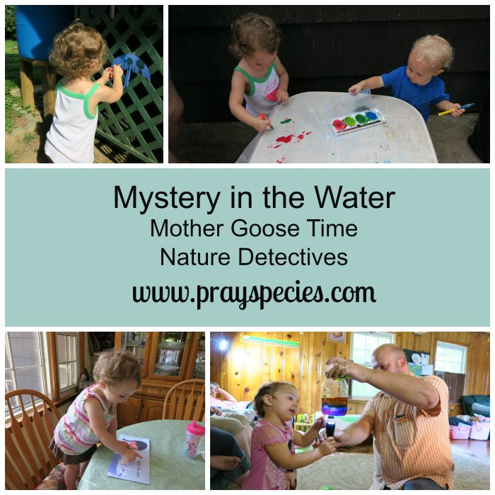 mystery in the water collage
