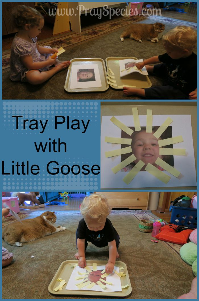 tray play with little goose collage