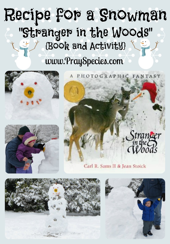 Recipe for a Snowman Stranger in the Woods Book and Activity