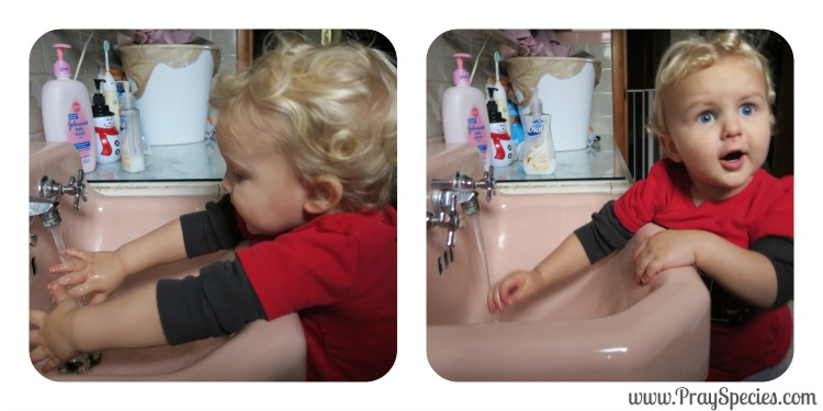 Washing Hands with Owl Collage