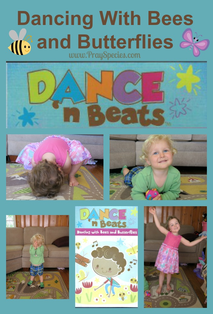 Dancing With Bees and Butterflies