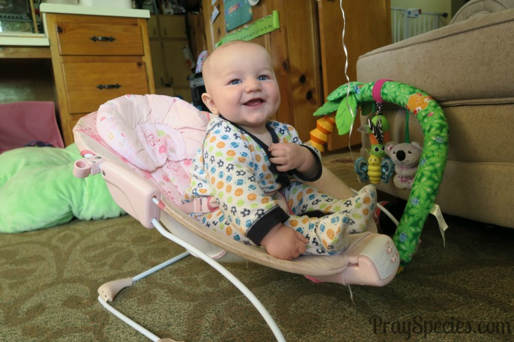 Guppy in pink bouncy chair