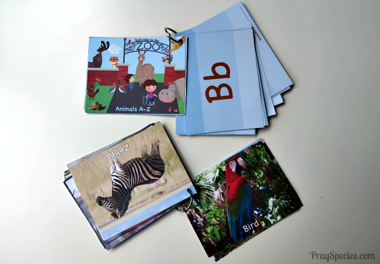B for Bird Zoo Keeper Cards