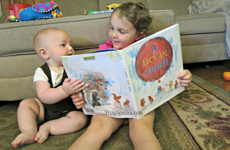 Ladybug and Guppy reading a book MGT