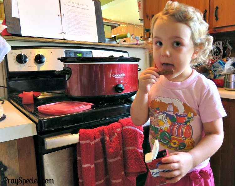 Cooking With Kids cinnamon stick apples
