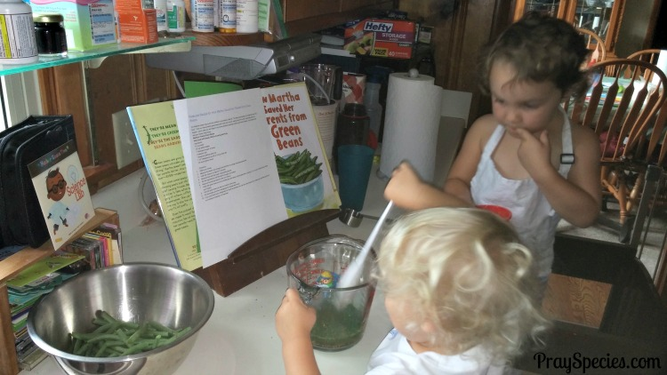 Making pickeled green beans